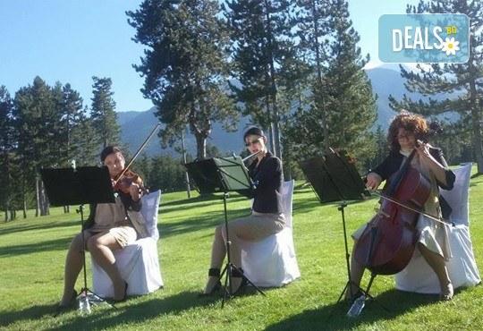 Цялостна организация на сватбено тържество, координатор на сватбения ден + водещ на изнесен ритуал от MUSIC for You! - Снимка 19