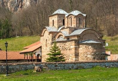 Нова година в Пирот, Сърбия: 2 нощувки със закуски и 1 празнична вечеря, транспорт от агенция Поход - Снимка