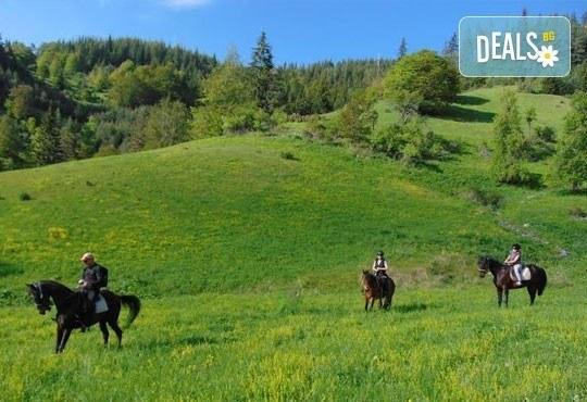 Уикенд в Ранчо Диви Родопи! 1 нощувка със закуска и вечеря, 2 часа преход с коне в Родопите и видеозаснемане с екшън камера - Снимка 7