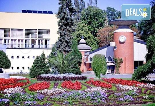 Нова година 2017 в кк Върнячка баня, Сърбия! 3 нощувки със закуски и 2 вечери в хотел Merkur NOVI 3*, транспорт и програма - Снимка 6