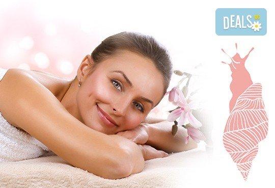 Тонизирайте тялото си! Масаж с масла с екстракт от охлюви на цяло тяло, лице, глава и рефлексотерапия в студио Relax Beauty&Spa! - Снимка 1
