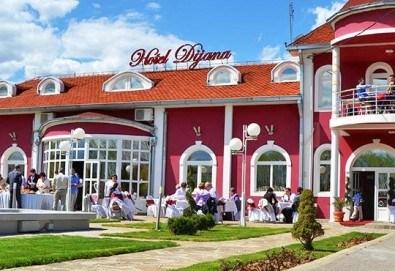 Посрещнете сръбската Нова година в Пирот през януари! 1 нощувка със закуска и празнична вечеря в хотел Dijana 3*, транспорт - Снимка