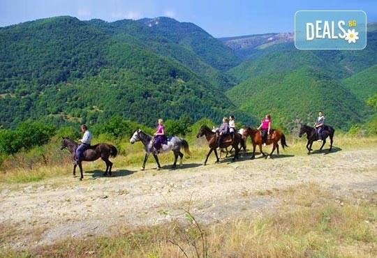 ДВА часа коннен преход - конна езда/ разходка с кон за начинаещи с инструктор в полите на Родопите от Конна база Стела - Снимка 5