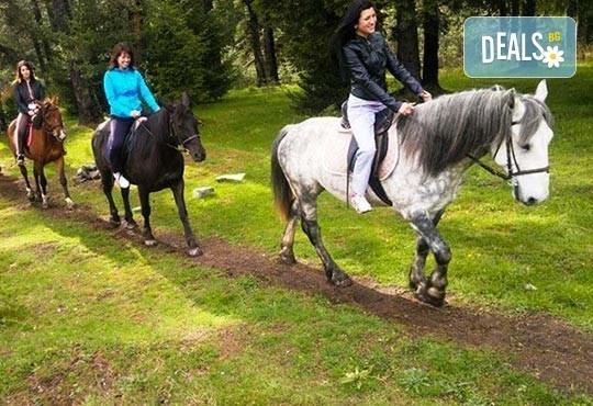 ДВА часа коннен преход - конна езда/ разходка с кон за начинаещи с инструктор в полите на Родопите от Конна база Стела - Снимка 6