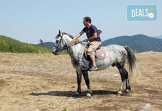 ДВА часа коннен преход - конна езда/ разходка с кон за начинаещи с инструктор в полите на Родопите от Конна база Стела - Снимка 2