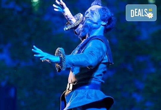 Гледайте Дон Кихот - балет по музика на Лудвиг Минкус с участието на гост-звездата на Кремълския балет - Егор Мотузов, 14.12. от 19 часа - Снимка 3