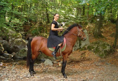 Коледна промоция от Конна база Св. Иван Рилски! Конна езда на чист въздух във Владая! - Снимка