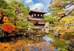 Отърсете се от грижите с японска Zen терапия на цяло тяло с топли камъни, жасмин и зелен чай само в студио Giro! - Снимка
