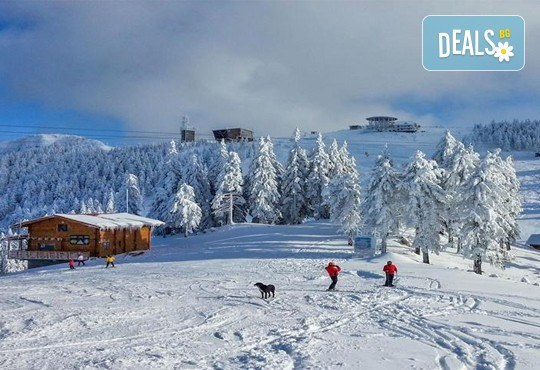 На ски през февруари в Бущени, Румъния: 4 нощувки със закуски в Bavaria 3*, транспорт