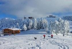 На ски в Румъния през февруари с Дари Травел! 4 нощувки със закуски в хотел Bavaria 3* в Бущени и транспорт - Снимка