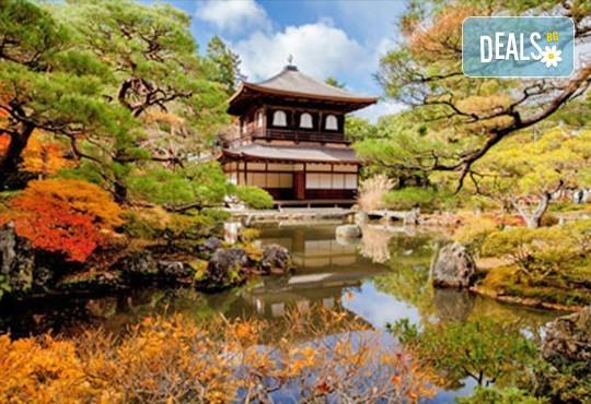 Отърсете се от грижите с японска Zen терапия на цяло тяло с топли камъни, жасмин и зелен чай само в студио Giro! - Снимка 1