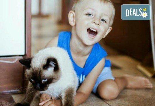 Професионална едночасова детска, семейна, индивидуална фотосесия или с друга тематика по избор с неограничен брой кадри и с 20 обработени кадъра на открито от Olimpea Photography! - Снимка 6