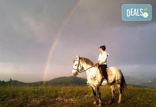 ДВА часа коннен преход - конна езда/ разходка с кон за начинаещи с инструктор в полите на Родопите от Конна база Стела - Снимка 7