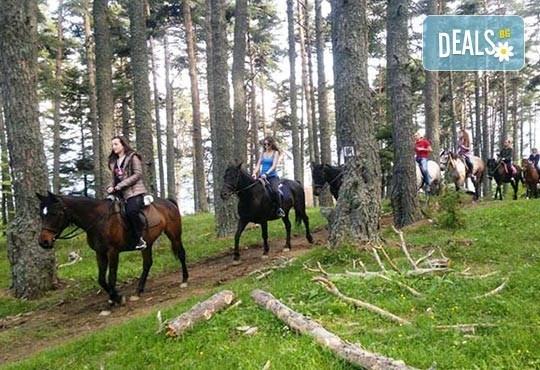 ДВА часа коннен преход - конна езда/ разходка с кон за начинаещи с инструктор в полите на Родопите от Конна база Стела - Снимка 8