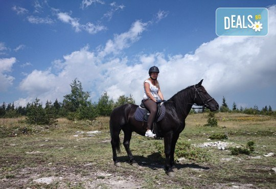 ДВА часа коннен преход - конна езда/ разходка с кон за начинаещи с инструктор в полите на Родопите от Конна база Стела - Снимка 1