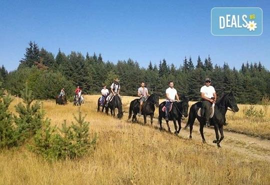 ДВА часа коннен преход - конна езда/ разходка с кон за начинаещи с инструктор в полите на Родопите от Конна база Стела - Снимка 4