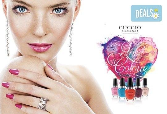 Маникюр с Cuccio Colour Veneer - класически лак или гел лак, и бонус 2 декорации, в студио BLOOM beauty & spa! - Снимка 1