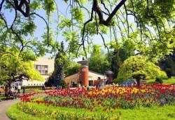 Екскурзия за 3-ти март във Върнячка баня, Сърбия! 2 нощувки със закуски и вечери, транспорт и водач от Комфорт Травел! - Снимка