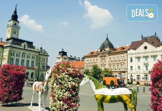 Екскурзия до Белград, Сърбия, през април! 2 нощувки със закуски в хотел 3*, транспорт и програма в Нови Сад и Ниш! - Снимка 2