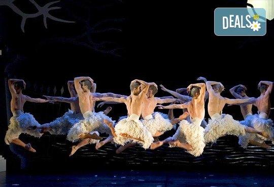 Лебедово езеро 3D на Матю Борн, на 14.02. от 19ч, във всички кина Арена в София! - Снимка 5