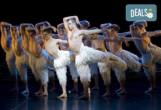 Лебедово езеро 3D на Матю Борн, на 14.02. от 19ч, във всички кина Арена в София! - Снимка 7