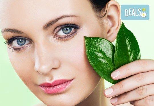 За млада кожа! Колагенова терапия за лице и шия с нанасяне на чист колаген с ултразвук от NSB Beauty Center! - Снимка 1