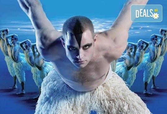 Лебедово езеро 3D на Матю Борн, на 14.02. от 19ч, във всички кина Арена в страната! - Снимка 2