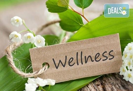90-минутна комбинирана терапия за цяло тяло - релаксиращ, лечебен или дълбокотъканен масаж, масаж на стъпала и крака с вибромасажор или рефлексотерапия по избор - Снимка 4