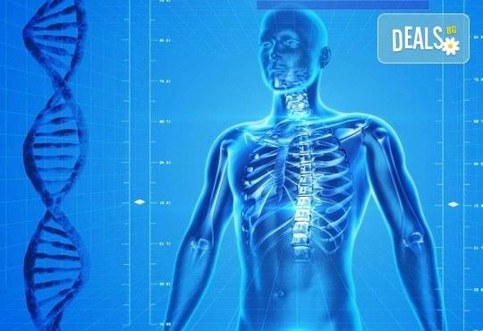 Измерване на костната плътност с ултразвуков остеоденситометър и незабавно получаване на резултата от изследването от Медицински център Хармония - Снимка 1
