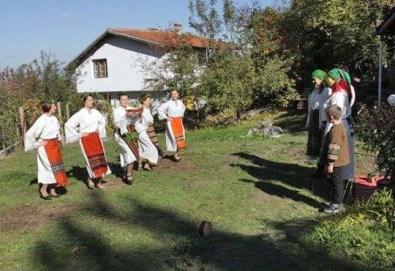 Раздвижете се в ритъма на българското хоро! 2 или 4 посещения на занимания по народни танци в клуб Вишана! - Снимка