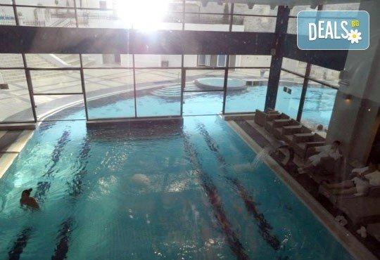 СПА уикенд през февруари, март и април в комплекс Рибарска баня 3*, Сърбия: 1 нощувка със закуска и празнична вечеря, ползване на минерални басейни и джакузи, транспорт - Снимка 2