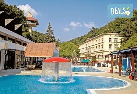 СПА уикенд през февруари, март и април в комплекс Рибарска баня 3*, Сърбия: 1 нощувка със закуска и празнична вечеря, ползване на минерални басейни и джакузи, транспорт - Снимка 1