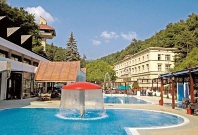 СПА уикенд през февруари, март и април в комплекс Рибарска баня 3*, Сърбия: 1 нощувка със закуска и празнична вечеря, ползване на минерални басейни и джакузи, транспорт - Снимка