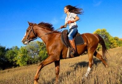 Подарете си различно преживяване с 45 минути конна езда с водач от конна база София – Юг, Драгалевци!