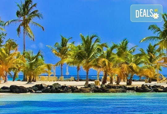 Март или май в Пунта Кана, Доминиканска република: 7 нощувки, All Inclusive, билет