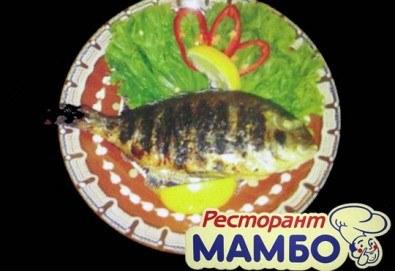 Кулинарен круиз! Ципура, лаврак, пъстърва на скара с гарнитура или филе калкан по гръцки от Ресторант - механа Мамбо! - Снимка