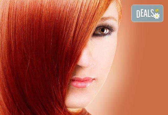 Боядисване с боя на клиента, подстригване и изправяне с преса и терапия за блясък на косата с продукти на Schwarzkopf, ART ADRIA! - Снимка 1