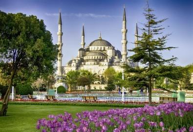 Екскурзия за Фестивала на лалето в Истанбул на специална цена! Vatan Asur 4*: 2 нощувки, закуски, транспорт и екскурзовод! - Снимка