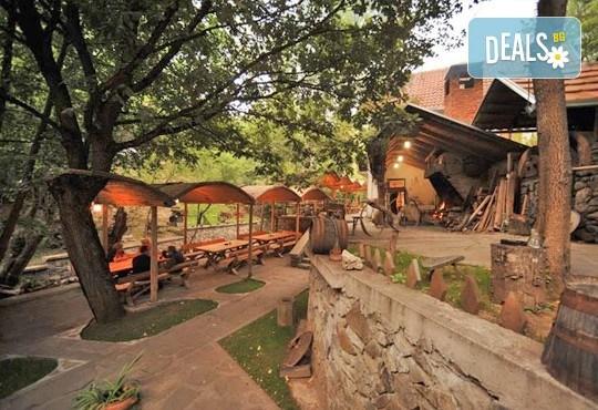 СПА уикенд за Гергьовден в Пролом Баня, Сърбия, с Дениз Травел! 2 нощувки със закуски, обеди и вечери в хотел Радан, ползване на СПА зона и танспорт - Снимка 7