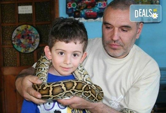 Чист въздух и игри в Драгалевци - Детски център Бонго Бонго предлага 3 часа лудо парти за 10 деца и родители - Снимка 5