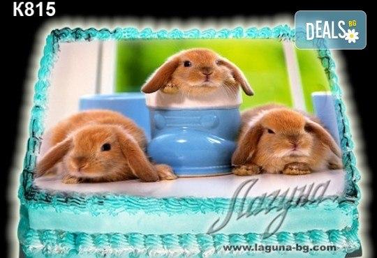 Великденска торта с картинки на зайчета, рисувани яйчица и много пролетно настроение, избор от 20 фото-картинки от Виенски салон Лагуна! - Снимка 15