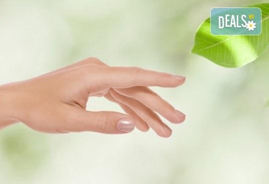 За красиви и нежни ръце с гладка кожа - 30-минутна парафинова терапия за ръце и бонус в Салон Виктория! - Снимка 1