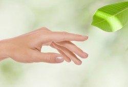 За красиви и нежни ръце с гладка кожа - 30-минутна парафинова терапия за ръце и бонус в Салон Виктория! - Снимка