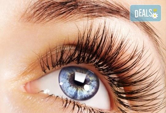 Изящен поглед с копринени мигли косъм по косъм или с 3D ефект в студио за красота Fabio Salsa - Снимка 2