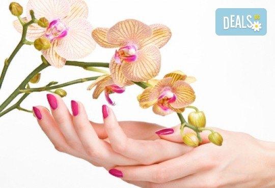 Разкрасете ръцете си с класически или френски маникюр с гел лак Blue Sky/S&A /CANNI в салон Виктория - Снимка 2