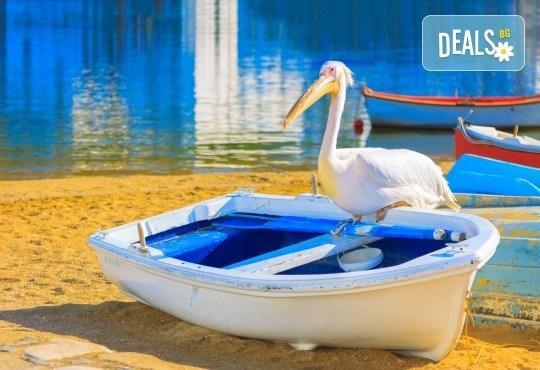 За 1 ден до природен резерват Лимни Керкини и Кукуш, Гърция! Транспорт, водач и програма от Дениз Травел! - Снимка 4