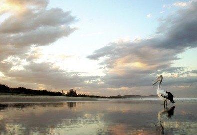 За 1 ден до природен резерват Лимни Керкини и Кукуш, Гърция! Транспорт, водач и програма от Дениз Травел! - Снимка