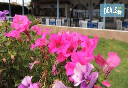 Почивка през юни в Айвалък, Турция с Дениз Травел! 7 нощувки на база All Inclusive в Olivera Resort 3*, възможност за транспорт! - Снимка 11