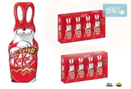 Изненадайте Вашето дете с 1 зайче Kit Kat и 2 сета от малки зайчета Kit Kat от Kafemania.bg! Ограничени количества! - Снимка 1