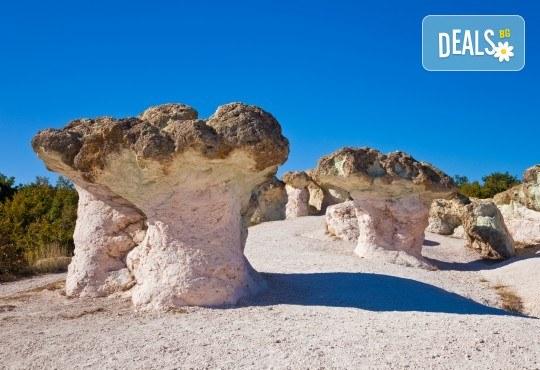 Посетете Перперикон, Кърджали и Каменните гъби с еднодневна екскурзия с транспорт и водач от Комфорт Травел! - Снимка 1